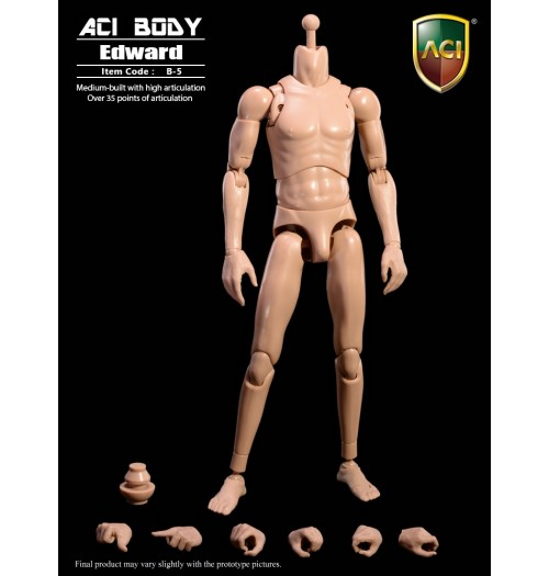 ACI TOYS 1/6 Medium Built Body: Edward
