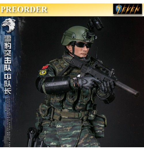 PREORDER: DAM Toys 1/6 Chinese PAP Force Snow Leopard Team Leader