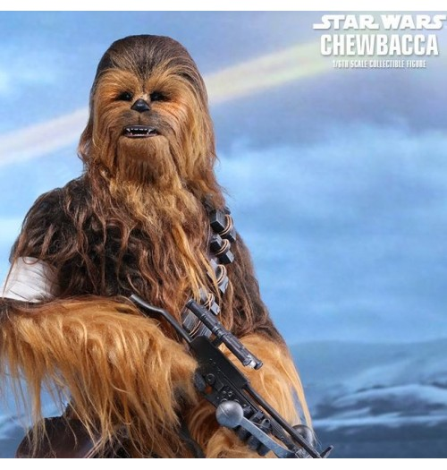 Hot Toys 1/6 Star Wars Force Awakens: Chewbacca Box Set