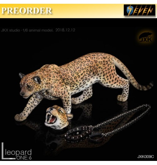 PREORDER: JxK Studio 1/6 The leopard C Yellow: Set