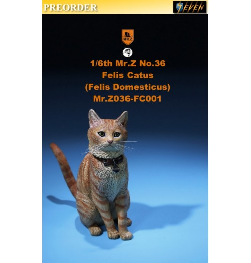 PREORDER: Mr.Z 1/6 Real Animal S36 Felis Catus (FC001)