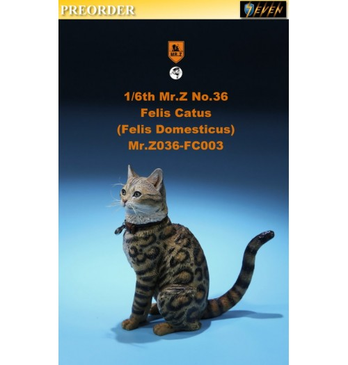 PREORDER: Mr.Z 1/6 Real Animal S36 Felis Catus (FC003)