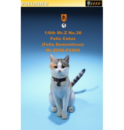 PREORDER: Mr.Z 1/6 Real Animal S36 Felis Catus (FC004)