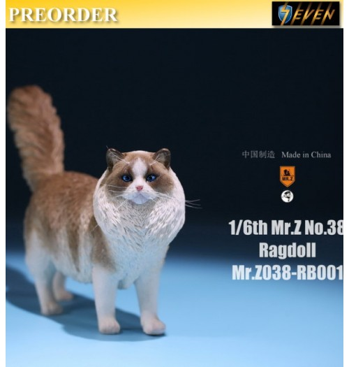 PREORDER: Mr.Z 1/6 Real Animal S38 Ragdoll (RB001)
