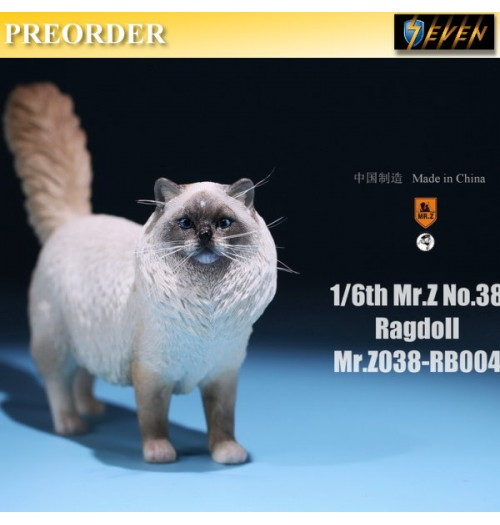 PREORDER: Mr.Z 1/6 Real Animal S38 Ragdoll (RB004)