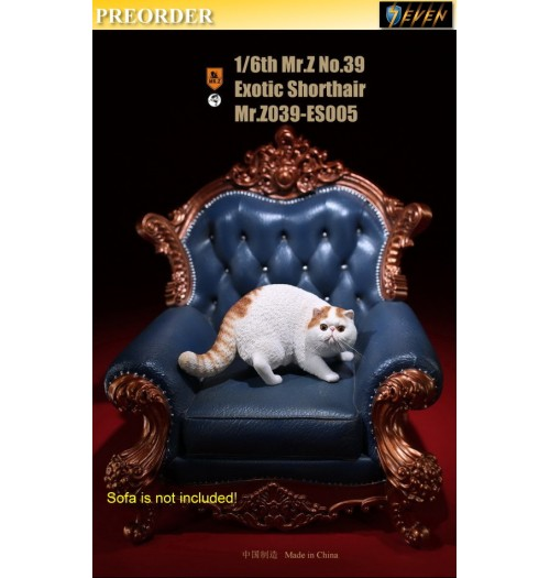PREORDER: Mr.Z 1/6 Real Animal S39 Exotic Shorthair (ES005)