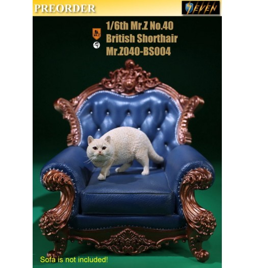 PREORDER: Mr.Z 1/6 Real Animal S40 British Shorthair (RB004)