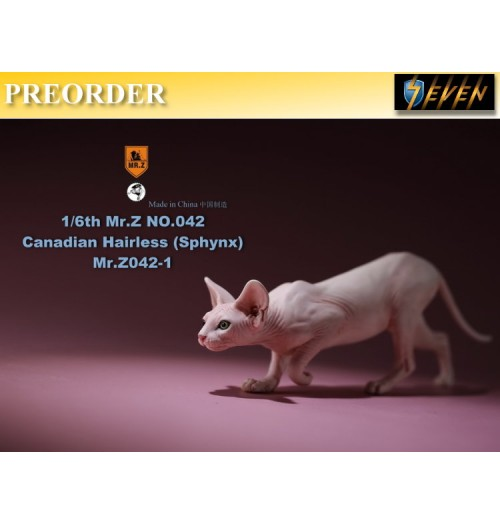 PREORDER: Mr.Z 1/6 No.42 Canadian Hairless (Sphynx) #A: Boxset