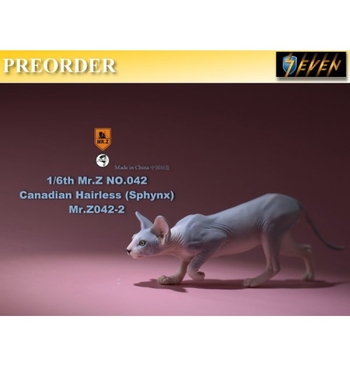 PREORDER: Mr.Z 1/6 No.42 Canadian Hairless (Sphynx) #B: Boxset