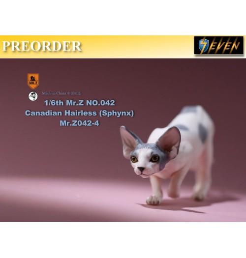 PREORDER: Mr.Z 1/6 No.42 Canadian Hairless (Sphynx) #D: Boxset
