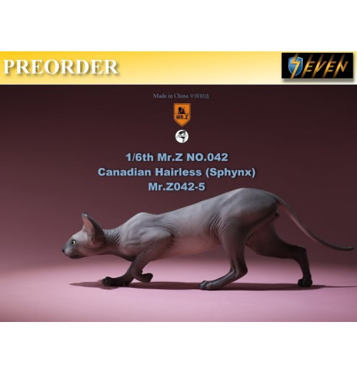 PREORDER: Mr.Z 1/6 No.42 Canadian Hairless (Sphynx) #E: Boxset