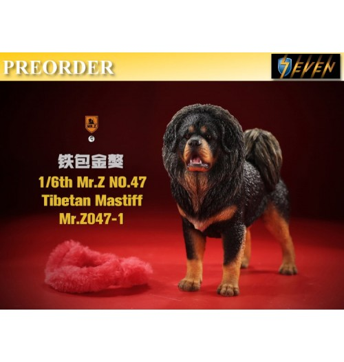 PREORDER: Mr.Z 1/6 No.47 Tibetan Mastiff #1: Boxset