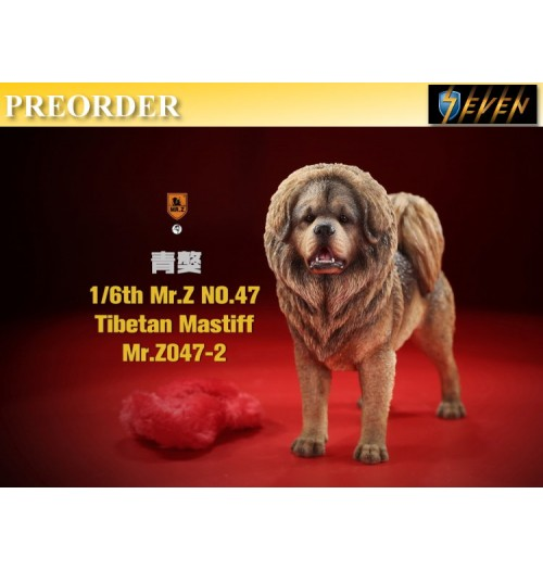 PREORDER: Mr.Z 1/6 No.47 Tibetan Mastiff #2: Boxset