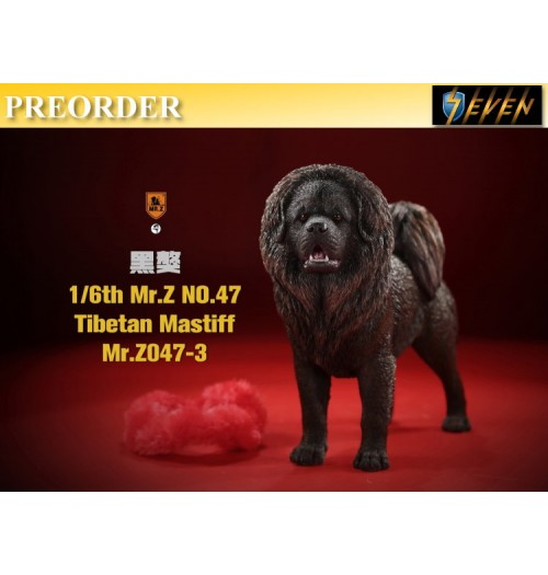 PREORDER: Mr.Z 1/6 No.47 Tibetan Mastiff #3: Boxset