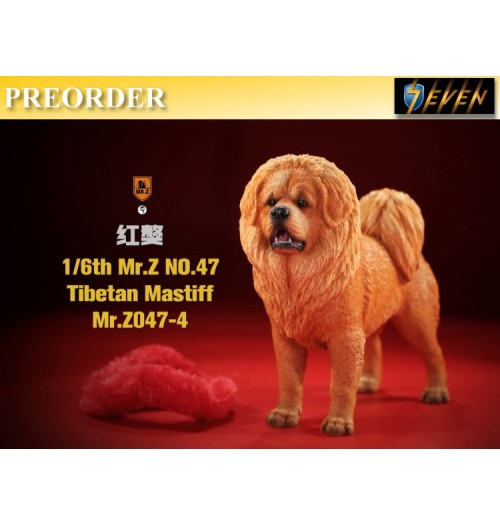 PREORDER: Mr.Z 1/6 No.47 Tibetan Mastiff #4: Boxset