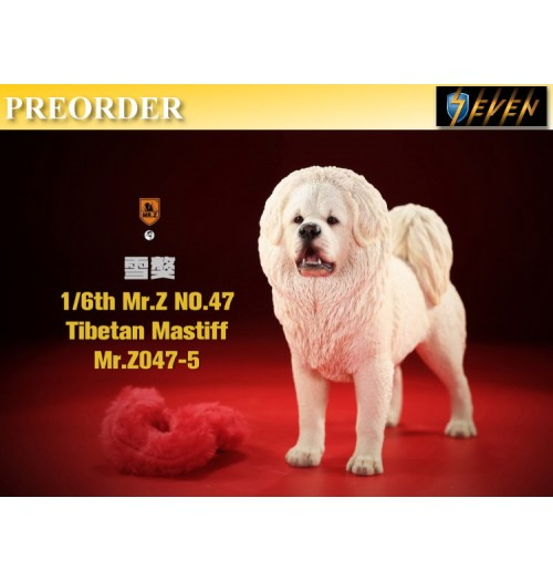 PREORDER: Mr.Z 1/6 No.47 Tibetan Mastiff #5: Boxset