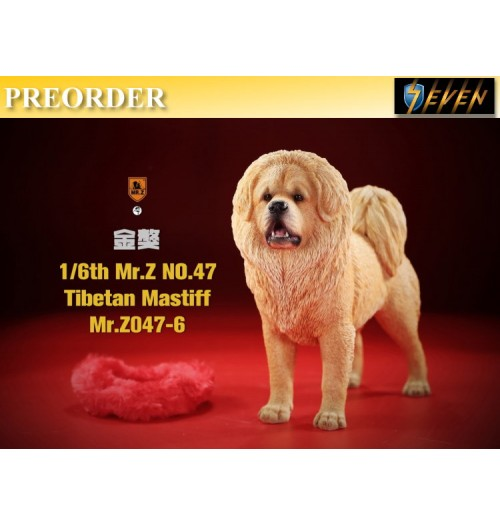 PREORDER: Mr.Z 1/6 No.47 Tibetan Mastiff #6: Boxset