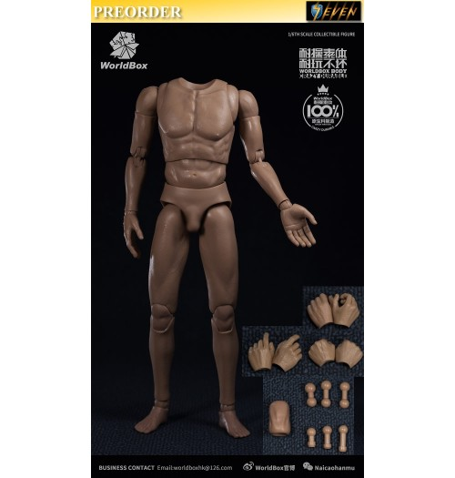 PREORDER: WorldBox 1/6 Durable Body #AT020
