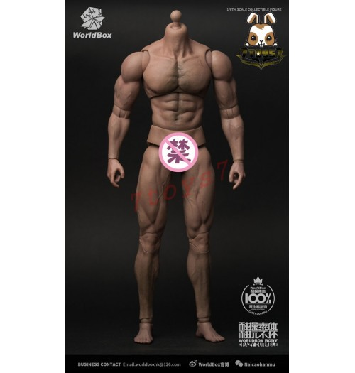 WorldBox: 1/6 Durable Body - Ripped